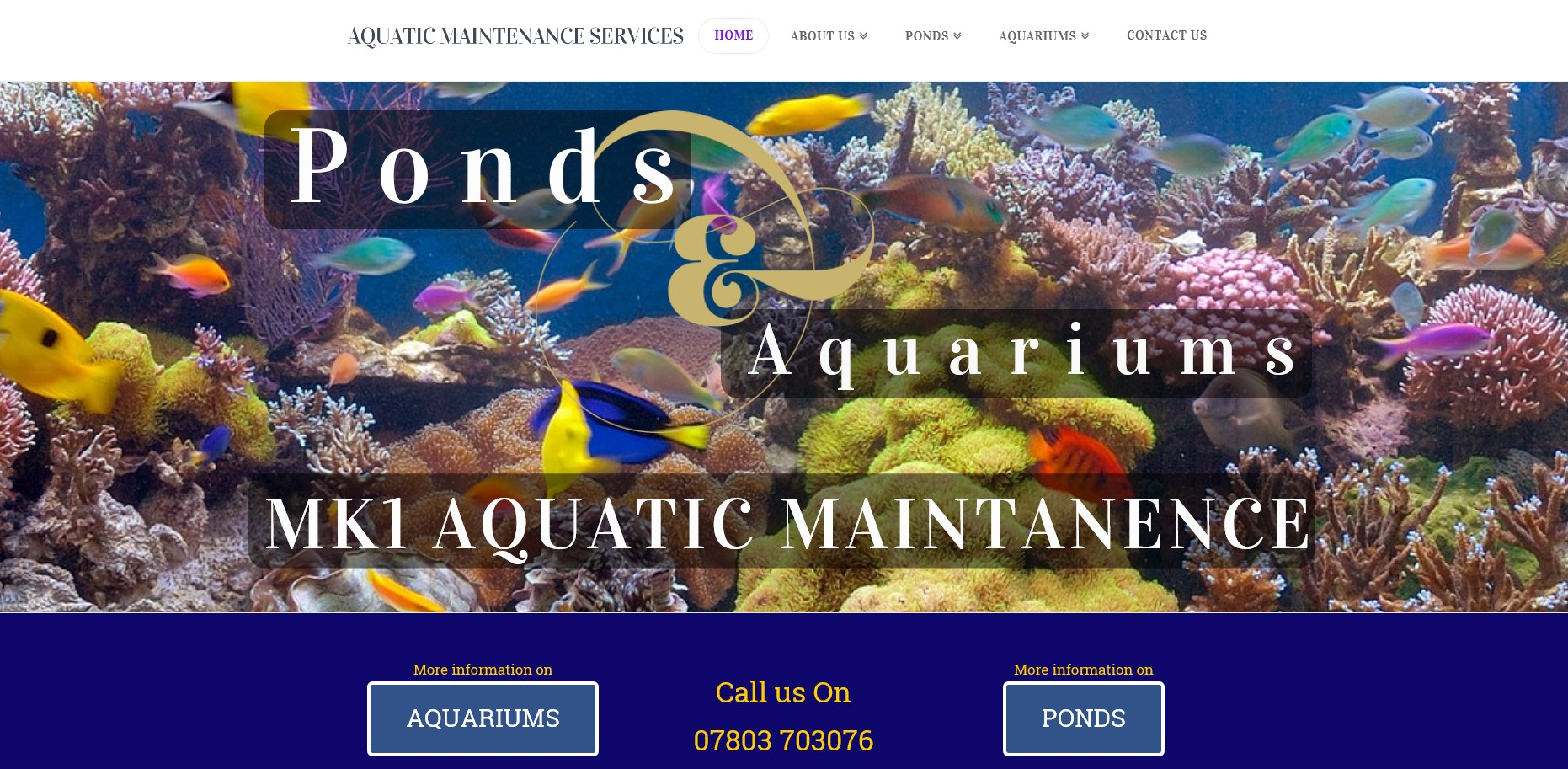 Mk1 Aquatic Maintenance Holmes of Heathrow Website By T900 Website Design in Surrey